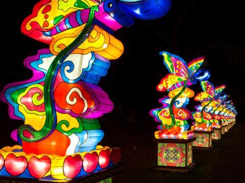 중국 연등 축제에서 화려하게 불을 밝힌 연등 행렬