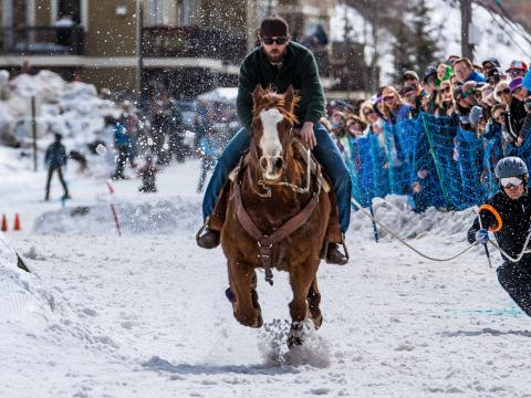 웨스트 옐로스톤의 스키어링 서부 챔피언십에서 말이 끄는 스키어링