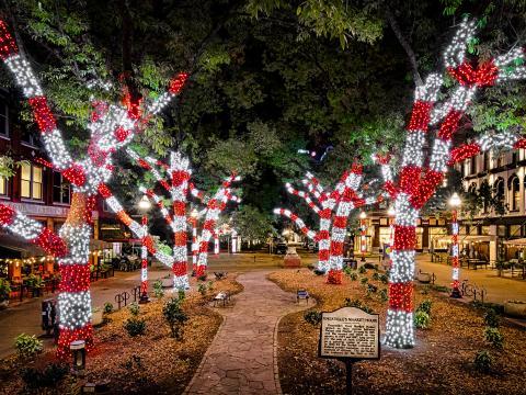 테네시주 녹스빌을 비추는 휴일의 빛